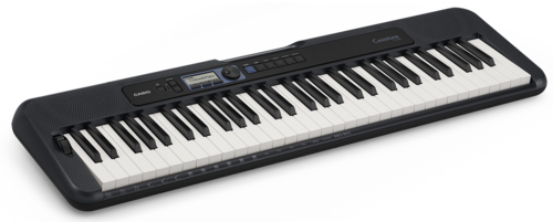 casio-ct-s300+smaller